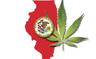 Chicago Drug Lawyer - Cook County Drug Lawyers